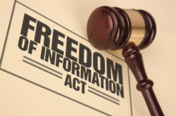 Istanza per l'accesso agli atti amministrativi ai sensi del FOIA