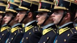 Concorsi Forze Armate: esclusione illegittima se il tasso alcolemico è di poco superiore alla soglia consentita