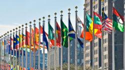 Incidenza delle fonti sovranazionali sulla stabilità degli atti amministrativi e giurisdizionali nazionali