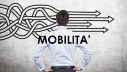 Istruzione, mobilità 2017/2018: si valuta anche il pre-ruolo svolto nelle scuole paritarie